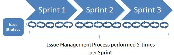 Agile Issue Management