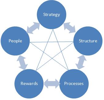organizational design star model graphic