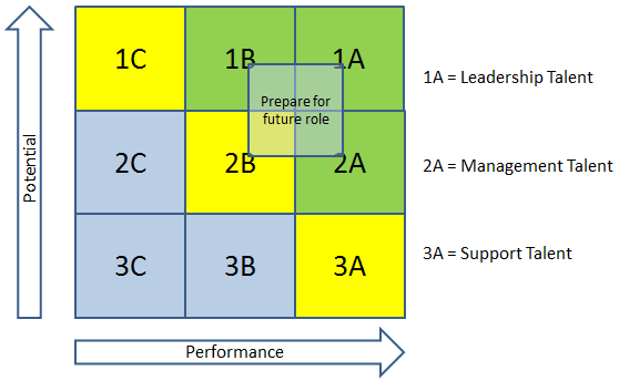 The Performance and Potential Matrix